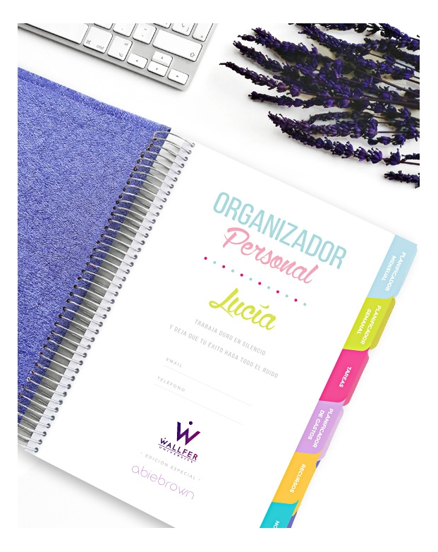 Organizador Wallfer